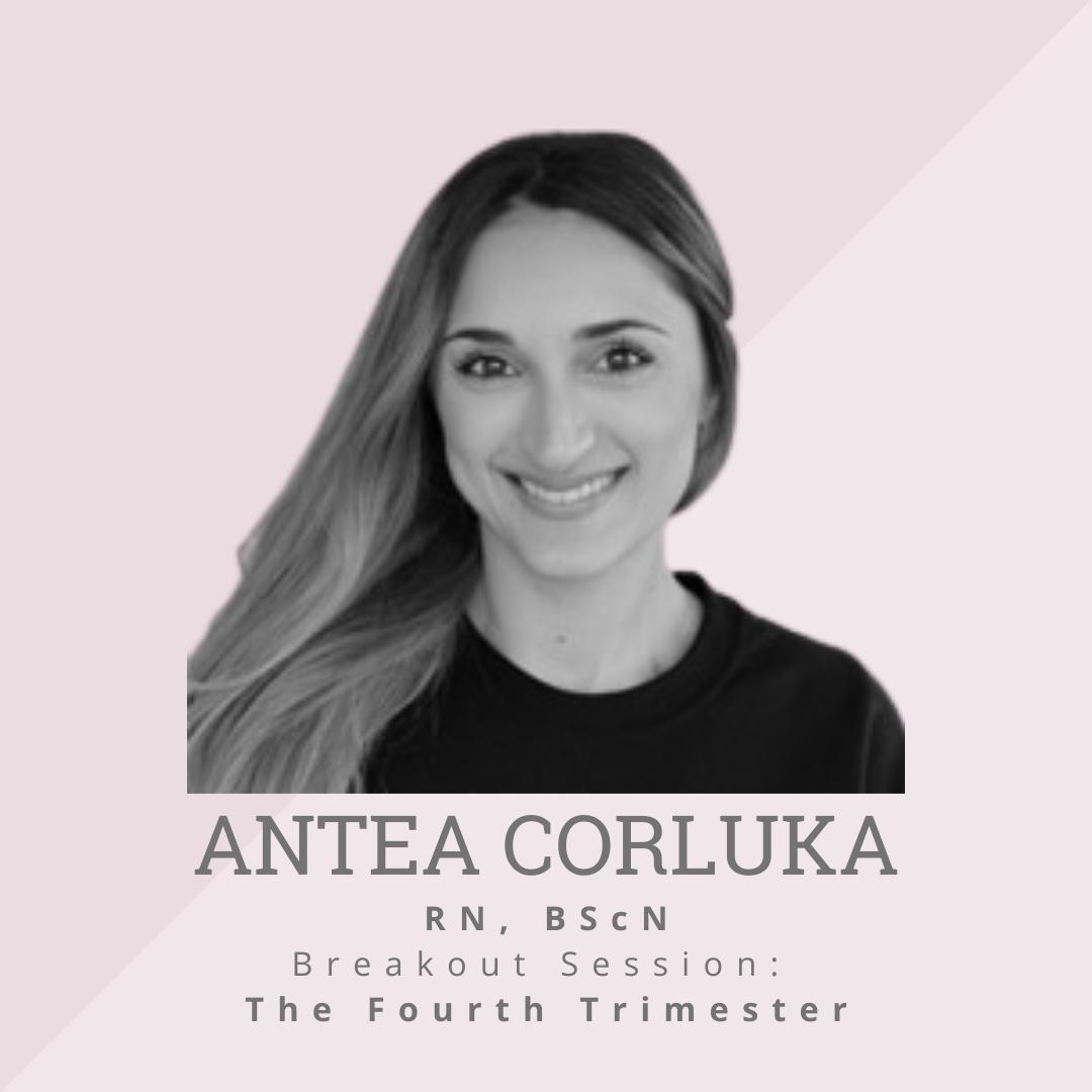 Antea Corluka