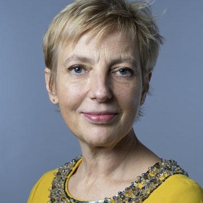 H.E. Anna Karin Eneström